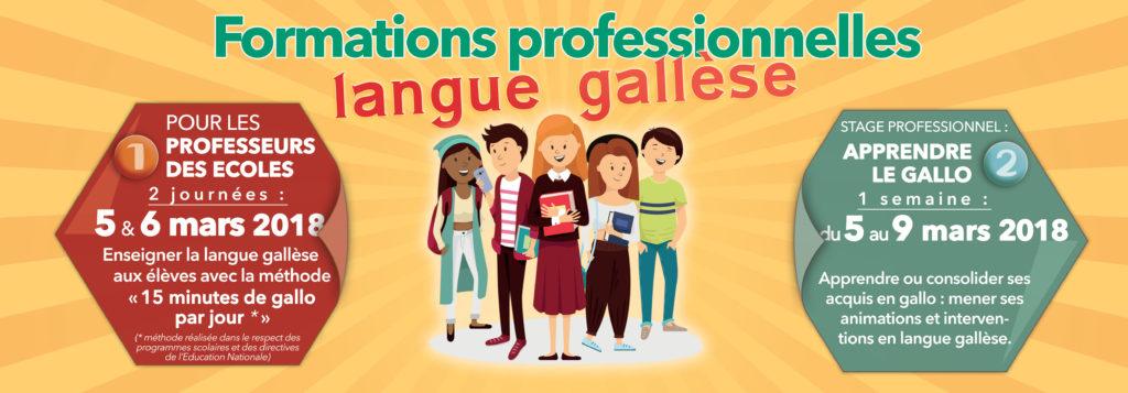 Formations Professionnelles Langue Gallèse