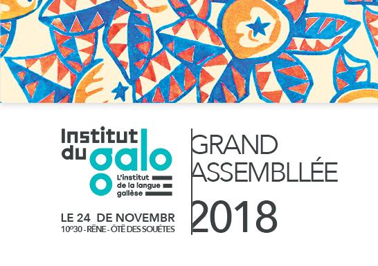Permiére Grand Assembllée a l'Institut du Galo