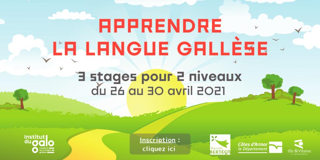 Découvrez la langue gallèse ou consolidez votre niveau !